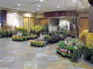 March Garden Day, Saturday, March 11, 2017